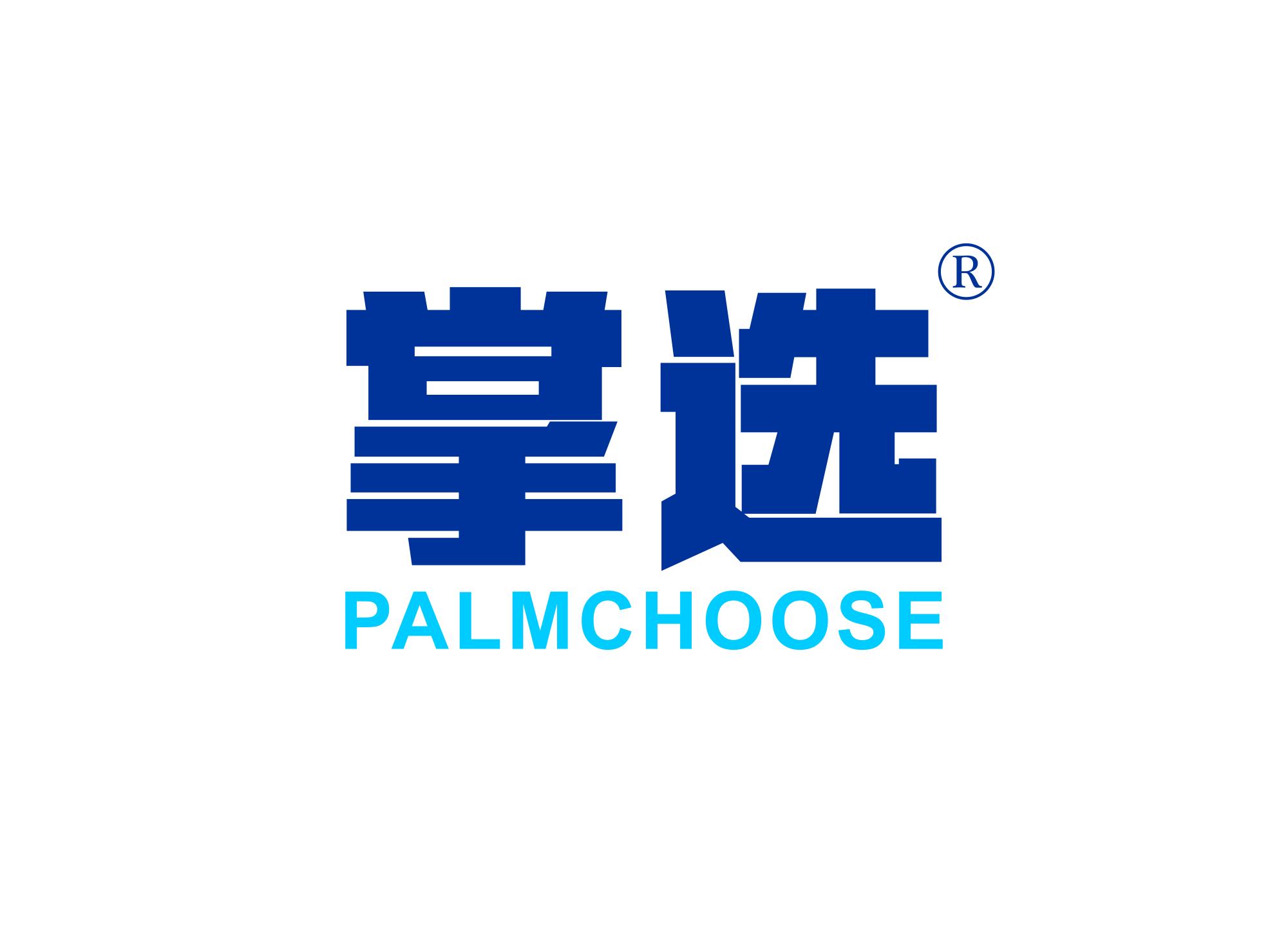 掌选 PALMCHOOSE