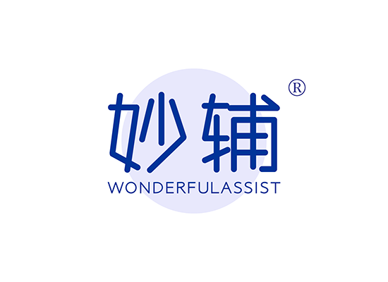 妙辅 WONDERFULASSIST