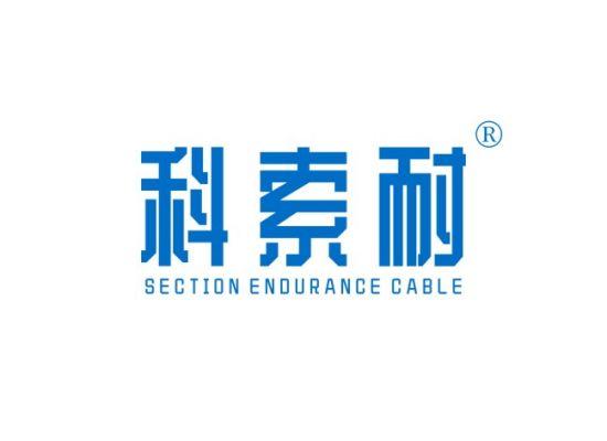 科索耐 SECTION ENDURANCE CABLE
