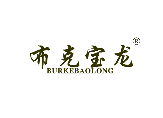 布克宝龙 BURKEBAOLONG