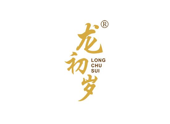 龙初岁;LONGCHUSUI