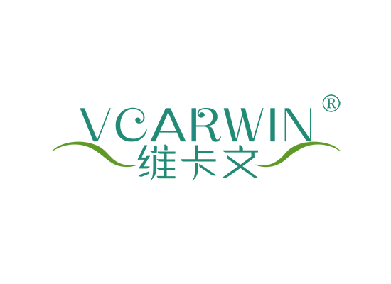 维卡文 VCARWIN