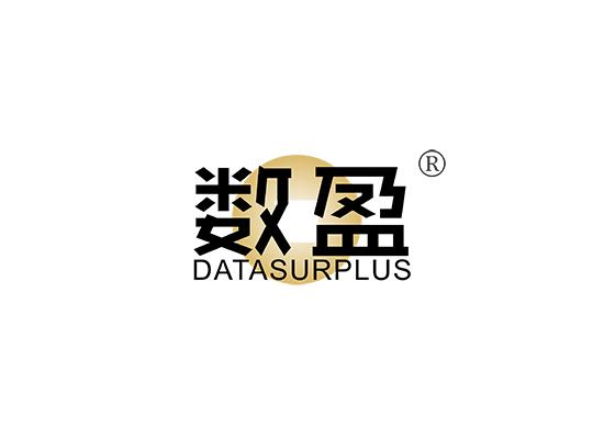 数盈 DATA SURPLUS