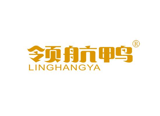 领航鸭;LINGHANGYA