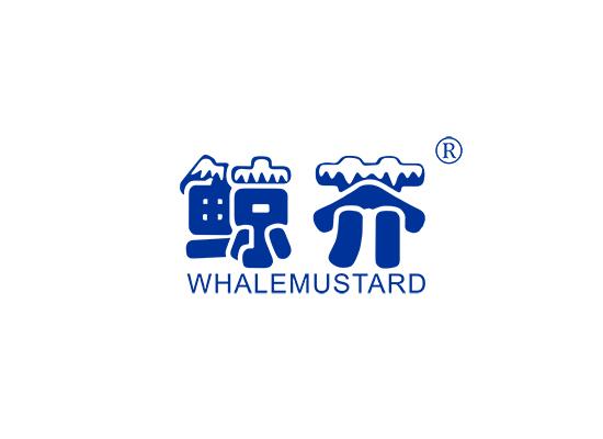 鲸芥 WHALEMUSTARD