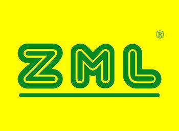 9-A389 ZML