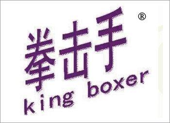 5-00141 拳击手