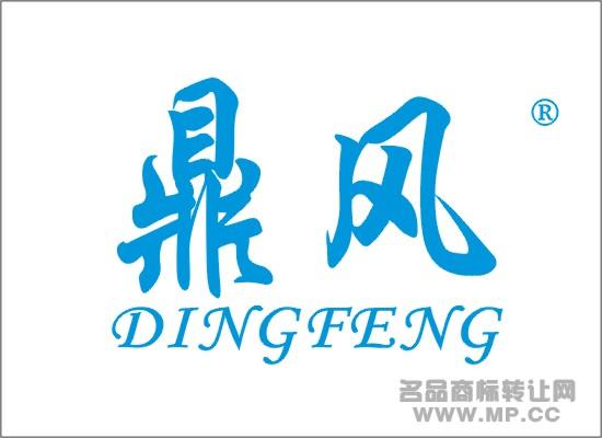 鼎风商标转让 - 第16类-文具办公用品 - 中国名品商标