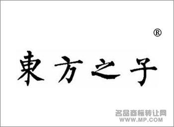 02-00114 东方之子