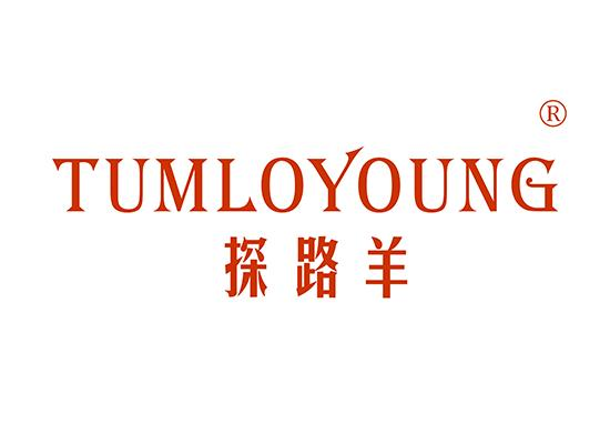 25-A2842 探路羊 TUMLOYOUNG