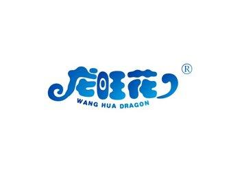 29-A1725 龙旺花 WANG HUA DRAGON