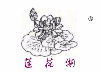 39-Y98302 莲花湖