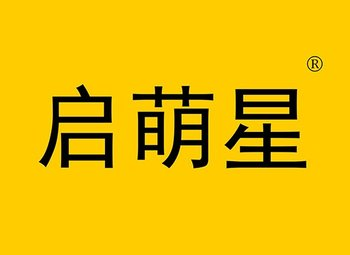 29-Y102766 启萌星