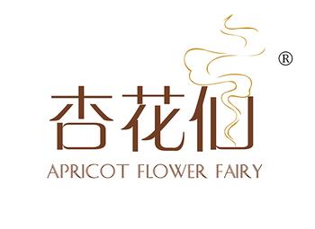 43-A500 杏花仙 APRICOT FLOWER FAIRY
