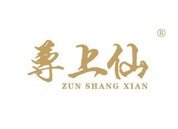 尊上仙,ZUNSHANGXIAN