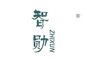 10-A148 智勋 ZHIXUN
