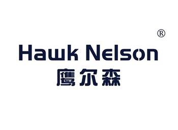 鹰尔森,HAWK NELSON