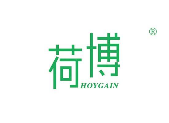 11-A775 荷博 HOYGAIN