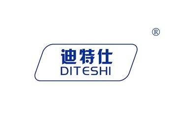 28-A244 迪特仕,DITESHI