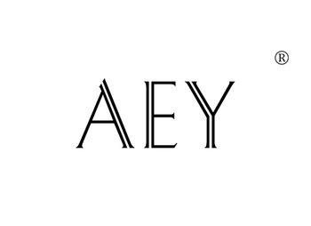 19-A313 AEY
