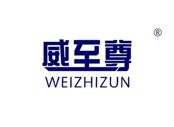 10-A230 威至尊 WEIZHIZUN