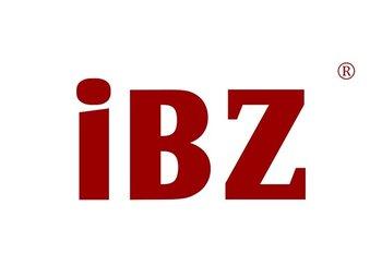 11-A873 IBZ