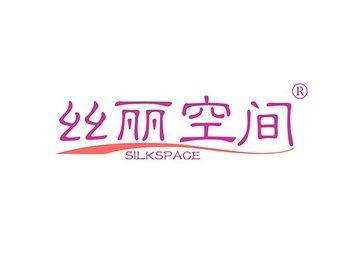 10-B311 丝丽空间 SILKSPACE
