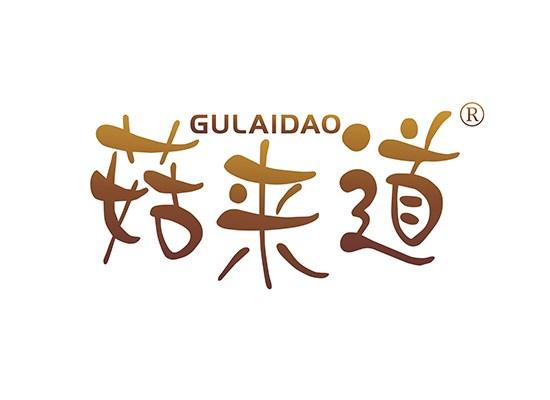 菇来道,GULAIDAO