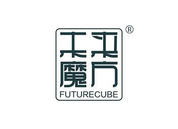 16-A319 未来魔方