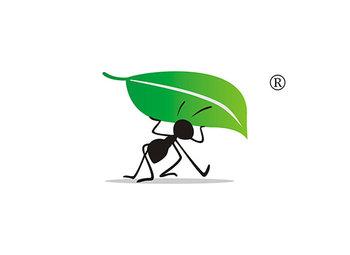 蚂蚁叶子图形