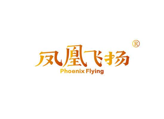 凤凰飞扬 PHOENIX FLYING