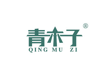 19-A581 青木子,QINGMUZI