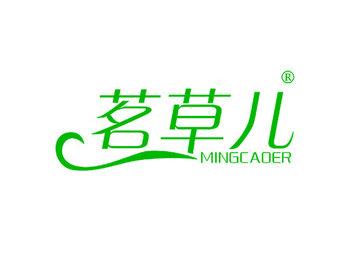 3-A421 茗草儿 MINGCAOER