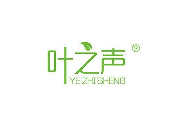10-A536 叶之声 YEZHISHENG