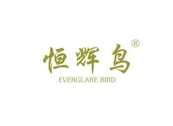 恒辉鸟,EVERGLARE BIRD