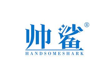 11-A1601 帅鲨 HANDSOME SHARK