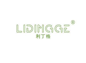 利丁格,LIDINGGE