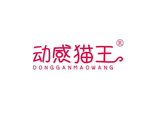 9-A1728 动感猫王 DONGGANMAOWANG