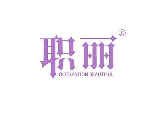 20-A1129 职丽 OCCUPATION BEAUTIFUL
