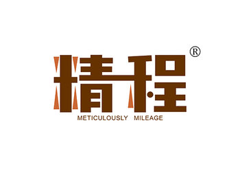 12-A538 精程 METICULOUSLY MILEAGE