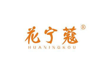 3-A2418 花宁蔻,HUANINGKOU