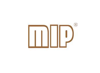 28-A078 MIP