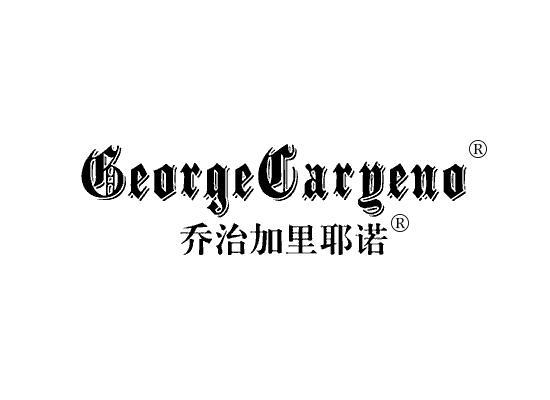 乔治加里耶诺