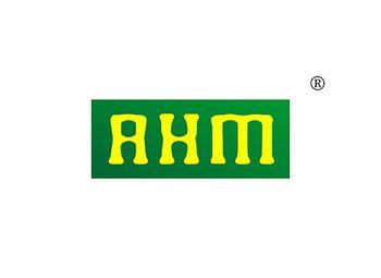 30-A963 AHM