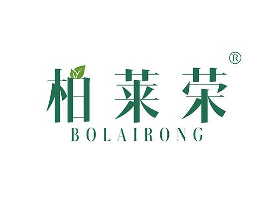 20-A1206 柏莱荣 BOLAIRONG
