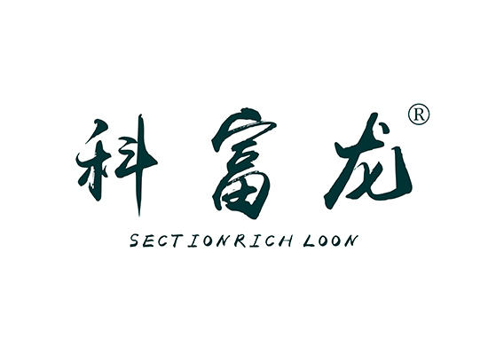 12-A612 科富龙 SECTIONRICH LOON