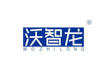 11-A1796 沃智龙 WOZHILONG