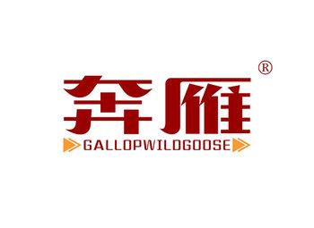 12-A664 奔雁 GALLOPWILDGOOSE