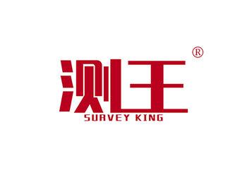 9-A1909 测王 SURVEY KING