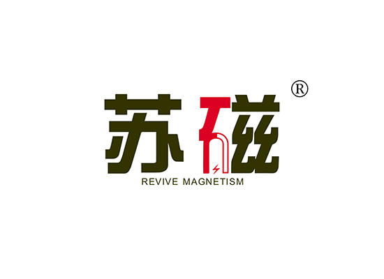 11-A2053 苏磁 REVIVE MAGNETISM